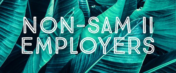Non-SAM II